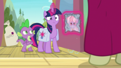 Size: 1920x1080 | Tagged: safe, screencap, dusty pages, spike, twilight sparkle, alicorn, dragon, pony, the point of no return, spoiler:s09e05, bag, claws, crossed arms, female, mailbag, male, offscreen character, picture frame, saddle bag, tail, twilight sparkle (alicorn), winged spike