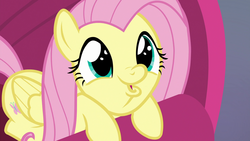 Size: 1920x1080 | Tagged: cute, daaaaaaaaaaaw, dashface, faic, female, fluttershy, fluttershy is best facemaker too, mare, pegasus, pony, safe, screencap, shyabetes, so awesome, spoiler:s09e09, sweet and smoky