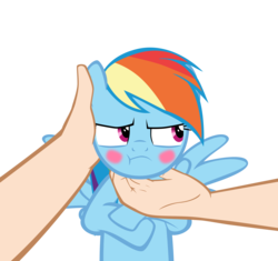 Size: 10417x9775 | Tagged: absurd res, artist:mrkat7214, blushing, chin scratch, cute, dashabetes, hand, human, human on pony petting, offscreen character, offscreen human, pegasus, petting, pony, pov, rainbow dash, rainbow dash is not amused, safe, simple background, spread wings, :t, transparent background, tsunderainbow, tsundere, unamused, vector, wings