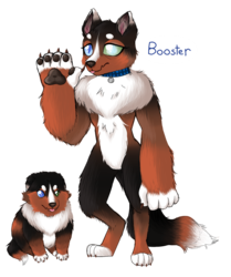 Size: 1124x1344 | Tagged: safe, artist:unoriginai, oc, oc only, oc:booster, anthro, diamond dog, digitigrade anthro, age progression, backstory in description, blind in one eye, collar, cute, diamond dog oc, diamond puppy, female, female diamond dog, nuclear sclerosis, paws, simple background, solo, text, transparent background, underpaw