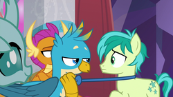 Size: 1280x720 | Tagged: safe, screencap, gallus, ocellus, sandbar, smolder, changedling, changeling, dragon, griffon, pony, she's all yak, spoiler:s09e07, amused, bowtie, claws, confused, crossed arms, curved horn, cute, cutie mark, diaocelles, dragoness, female, folded wings, frown, head feathers, horn, horns, lidded eyes, male, obscured face, out of context, pulling, smiling, talking, talons, teasing, teenaged dragon, teenager, wings