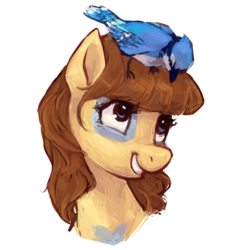 Size: 1024x1024 | Tagged: safe, artist:johling, oc, oc only, bird, blue jay, earth pony, pony, bust, female, looking down, mare, portrait, simple background, sitting on head, smiling, transparent background