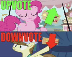 Size: 668x535 | Tagged: safe, edit, edited screencap, editor:undeadponysoldier, screencap, pinkie pie, roma, earth pony, pony, putting your hoof down, arrow, caption, downvote, eyes closed, female, fighting over opinions, funny, hat, image macro, mare, market, pointing, ponyville, sign, text, upvote, voting, wrong aspect ratio