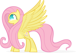 Size: 5751x4000 | Tagged: artist:kalleflaxx, cute, eye, eyelashes, eyes, female, fluttershy, long mane, pegasus, pony, safe, shy, shyabetes, shy smile, simple background, slight smile, smiling, solo, spread wings, standing, transparent background, vector, wingboner, wings