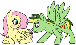 Size: 1000x600 | Tagged: artist:didgereethebrony, base used, blushing, canon x oc, chest fluff, female, fluttershy, male, mare, oc, oc:didgeree, pegasus, pony, pregnant, safe, shipping, simple background, stallion, straight, transparent background