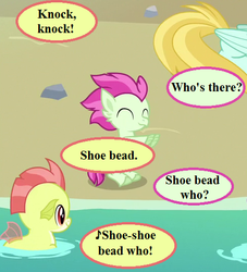 Size: 490x539 | Tagged: safe, edit, edited screencap, screencap, hippogriff, seapony (g4), surf and/or turf, baby seapony (g4), background hippogriff, beach, cropped, dialogue, fledgeling, knock knock joke, pun, rock, shoo be doo, speech bubble
