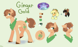 Size: 3880x2347 | Tagged: applejack, artist:darlyjay, earth pony, male, oc, oc:ginger gold, offspring, parent:applejack, parents:troublejack, parent:troubleshoes clyde, pony, reference sheet, safe, solo focus, stallion, troubleshoes clyde