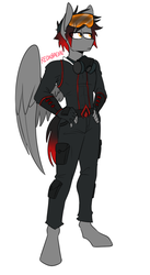 Size: 541x988 | Tagged: amber eyes, anthro, anthro oc, artist:redxbacon, assassin's creed, cargo pants, clothes, digitigrade anthro, fingerless gloves, gloves, goggles, hand on hip, hoodie, male, mask, oc, oc only, oc:shadow beat, pants, pegasus, safe, simple background, solo, solo male, white background, wings