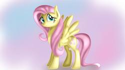 Size: 1280x720 | Tagged: artist:jbond, female, fluttershy, gradient background, looking at you, looking sideways, mare, pegasus, pony, safe, smiling, solo, spread wings, standing, wings