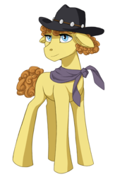 Size: 721x1108 | Tagged: artist:marly-kaxon, bandana, cowboy hat, curly mane, curly tail, earth pony, floppy ears, hat, male, oc, oc only, oc:ricochet, pony, safe, simple background, solo, stallion, standing, white background