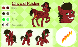 Size: 6000x3632 | Tagged: artist:euspuche, oc, oc:cloud rider, pegasus, pony, reference sheet, safe, vector