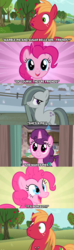 Size: 1280x4320 | Tagged: awkward, big macintosh, caption, comic, did not see that one coming, episode idea, episode needed, everything went better than expected, friendship, friendshipper on deck, friendshipping, marble pie, pinkie logic, pinkie pie, pony, safe, shocked, shocked expression, silence, stunned, sugar belle, surprised, unexpected, what a twist