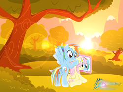 Size: 8000x6000 | Tagged: absurd res, artist:nightmaremoons, duo, flower, flower in hair, fluttershy, lens flare, rainbow dash, safe, scenery, spread wings, sunset, tree, wings