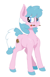 Size: 3040x4705 | Tagged: artist:paskanaakka, chest fluff, colored hooves, commission, digital art, earth pony, female, happy, mare, mouth hold, oc, oc:artabana, oc only, paintbrush, part of a set, pony, safe, simple background, smiling, solo, standing, transparent background