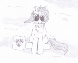 Size: 2048x1670 | Tagged: artist:ragmo, atg 2019, female, looking at you, monochrome, newbie artist training grounds, oc, oc only, pony, saddle bag, safe, sign, simple background, sitting, traditional art, unicorn