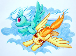 Size: 1280x943   Tagged: safe, artist:dawnfire, fleetfoot, spitfire, pegasus, pony, cloud, colored pupils, cute, duo, female, flying, mare, marker drawing, profile, sky, spread wings, traditional art, wings