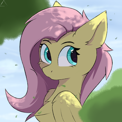 Size: 1024x1024 | Tagged: safe, artist:glazirka, fluttershy, pegasus, pony, bust, chest fluff, female, folded wings, looking sideways, mare, outdoors, portrait, solo, three quarter view, wings