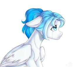 Size: 1246x1130   Tagged: safe, artist:kottonashi, oc, pegasus, pony, crying, solo