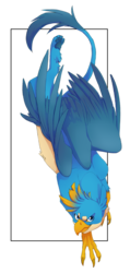 Size: 912x1920   Tagged: safe, artist:xcolorblisssketchx, gallus, griffon, abstract background, leg fluff, looking at you, male, overhead view, paws, solo, underpaw
