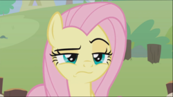 Size: 1278x721 | Tagged: safe, screencap, angel bunny, fluttershy, pegasus, pony, she talks to angel, spoiler:s09e18, angel is not amused, body swap, close-up, cropped, female, frown, lidded eyes, male and female, mare, raised eyebrow, solo