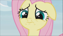 Size: 1280x721 | Tagged: safe, screencap, angel bunny, fluttershy, pegasus, pony, she talks to angel, spoiler:s09e18, body swap, close-up, cropped, cute, female, floppy ears, mare, sad, sadorable, scared, shyabetes, solo, wavy mouth