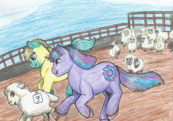 Size: 1645x1149 | Tagged: artist:69bea, colored hooves, earth, earth pony, female, happy, hoof fluff, male, mare, number, oc, oc:neon eclipse, oc only, open mouth, pony, running, safe, scared, sheep, sports, stallion, traditional art, unicorn