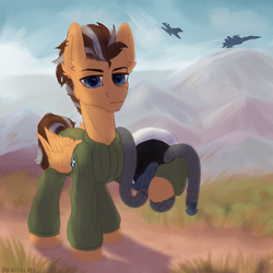 Size: 2000x2000 | Tagged: safe, artist:kotya, oc, oc only, oc:brightsky wing, pegasus, pony, ace combat, aircraft, clothes, f-16, mountain, solo, su-27, suit, wings