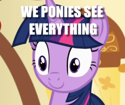 Size: 698x589 | Tagged: blank stare, caption, image macro, reference, safe, text, toy story, twilight sparkle, we toys can see everything