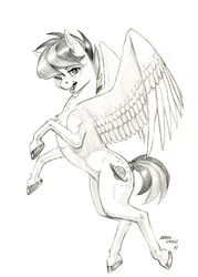 Size: 1000x1395 | Tagged: safe, artist:baron engel, oc, oc:apogee, pegasus, pony, colored hooves, female, filly, grayscale, mare, monochrome, pencil drawing, simple background, sketch, solo, traditional art, white background