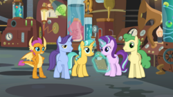 Size: 1087x607   Tagged: safe, screencap, citrine spark, fire quacker, huckleberry, november rain, smolder, squirk, starlight glimmer, dragon, octopus, pegasus, pony, unicorn, a horse shoe-in, spoiler:s09e20, claws, clipboard, doctor whooves' lab, dragoness, female, flameless fireworks, friendship student, glowing horn, horn, horns, laboratory, magic, magic aura, mare, pencil, raised eyebrow, raised hoof, specimens, spread wings, students, teenager, telekinesis, wings, young