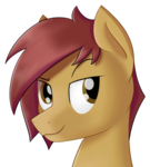 Size: 986x1092 | Tagged: safe, artist:ether-star, oc, oc only, earth pony, pony, bust, male, simple background, solo, stallion, transparent background