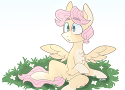 Size: 1280x920 | Tagged: safe, artist:scenebunny, artist:scenesonic, fluttershy, pegasus, pony, chest fluff, coat markings, cute, flower, grass, raised hoof, shyabetes, simple background, sitting, solo, spread wings, trans stallion, transgender, white background, wings