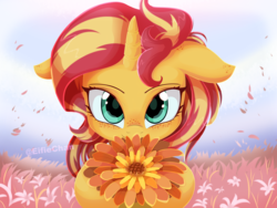 Size: 4000x3000 | Tagged: safe, artist:katakiuchi4u, sunset shimmer, pony, unicorn, adorable face, adorkable, cute, daaaaaaaaaaaw, dork, female, floppy ears, flower, freckles, hnnng, horn, katakiuchi4u is trying to murder us, looking at you, mare, petals, shimmerbetes, smiling, solo, sweet dreams fuel