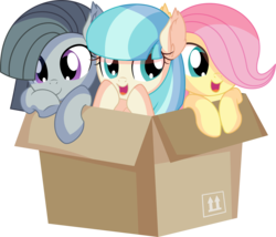Size: 7869x6727 | Tagged: safe, artist:cyanlightning, coco pommel, fluttershy, marble pie, earth pony, pegasus, pony, .svg available, absurd resolution, blushing, box, chest fluff, cocobetes, cute, daaaaaaaaaaaw, ear fluff, female, filly, marblebetes, open mouth, pony in a box, shyabetes, simple background, sitting, the council of shy ponies, transparent background, trio, trio female, vector, weapons-grade cute, young, younger