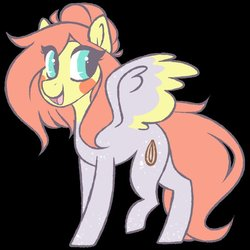 Size: 800x800   Tagged: safe, artist:crimmharmony, oc, oc only, oc:cinnamon seed, pegasus, pony, black background, body freckles, colored wings, colored wingtips, female, freckles, happy, hoof freckles, looking back, mare, multicolored wings, simple background, solo, spots, spread wings, standing, wing freckles, wings