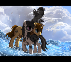Size: 900x776 | Tagged: safe, artist:ruhje, oc, oc only, oc:ember tempest, oc:lila hope, oc:shooting star, bird, pegasus, pony, seagull, unicorn, cloud, colt, family, female, male, ocean, pregnant, water