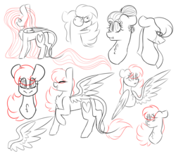 Size: 4500x4000 | Tagged: artist:crazysketch101, oc, oc:crazy looncrest, pegasus, pony, safe, sketch, sketch dump