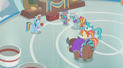 Size: 1366x766 | Tagged: safe, screencap, lighthoof, ocellus, rainbow dash, shimmy shake, smolder, snips, yona, changedling, changeling, dragon, earth pony, pegasus, pony, yak, 2 4 6 greaaat, ball, banner, baseball cap, bucket, cap, cheerleader, cheerleader ocellus, cheerleader outfit, cheerleader smolder, cheerleader yona, chest, clothes, cloven hooves, coach rainbow dash, colt, dragoness, face paint, female, flag, gym, hat, male, mare, monkey swings, pleated skirt, podium, ponytail, skirt, skirt lift, technically an upskirt shot, top hat, whistle