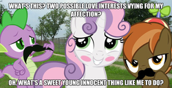 Size: 625x321 | Tagged: safe, button mash, spike, sweetie belle, dragon, pony, unicorn, blushing, colt, dragons in real life, facial hair, female, filly, irl, male, meme, moustache, photo, ponies in real life, shipping, spikebelle, straight, sweetiemash, text