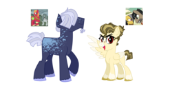 Size: 2000x1000 | Tagged: artist:castorochiaro, bandaid, bandaid on nose, bushy brows, dappled, earth pony, eyebrows, facial hair, female, goatee, hair over eyes, male, mare, oc, oc:calotype, oc:inky splash, offspring, parent:big macintosh, parent:daring do, parent:doctor caballeron, parent:marble pie, parents:daballeron, parents:marblemac, pegasus, safe, simple background, stallion, transparent background, unshorn fetlocks
