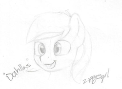 Size: 351x257 | Tagged: accent, artist:zippysqrl, bronycon, bronycon 2019, bust, explicit source, male, monochrome, oc, oc:moonlit ace, oc only, open mouth, pegasus, pony, portrait, safe, signature, simple background, sketch, sketchbook, stallion, white background