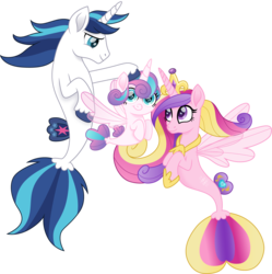 Size: 1493x1500 | Tagged: artist:cloudyglow, crown, cute, cutedance, daughter, family, female, fins, fin wings, flurrybetes, hooves, jewelry, looking at you, male, mother and father, movie accurate, princess cadance, princess flurry heart, regalia, royal family, safe, seaponified, seapony cadance, seapony flurry heart, seapony (g4), seapony shining armor, shining adorable, shining armor, simple background, smiling, species swap, tail, transparent background, wings