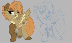 Size: 853x509 | Tagged: safe, artist:cheesepuffs, oc, oc:gari, alicorn, pony, alicorn oc, female, mare, sketch, socks (coat marking), solo