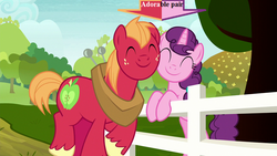 Size: 800x450 | Tagged: arrow, big macintosh, captain obvious, cute, cutie mark, edit, edited screencap, female, fence, field, horse collar, macabetes, male, marks for effort, safe, screencap, shipping, straight, sugar belle, sugarbetes, sugarmac, text, tree