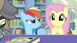Size: 1920x1080 | Tagged: safe, screencap, doctor caballeron, fluttershy, rainbow dash, earth pony, pegasus, pony, daring doubt, angry, betrayal, book, book signing, bookshelf, bookstore, cute, daring do and the fallen idol, disguise, excited, fake beard, female, flat cap, folded wings, frown, glare, grin, groom q.q. martingale, happy, hat, hooves together, library, male, mare, mouth drawing, mouth hold, narrowed eyes, pen, rainbow dash is not amused, raised eyebrow, saddle bag, shyabetes, smiling, stallion, too cute, trio, unamused, wings