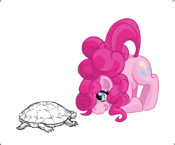 Size: 796x659 | Tagged: artist:vnmn, cute, face down ass up, pinkie pie, pony, safe, turtle