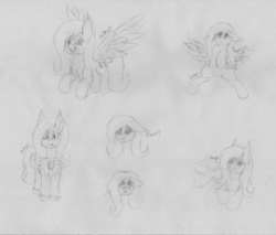 Size: 5970x5096 | Tagged: artist:wapamario63, cute, female, fluttershy, flying, mare, monochrome, pony, safe, shyabetes, sketch, sketch dump, solo, spread wings, traditional art, wings