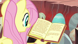 Size: 1920x1080 | Tagged: safe, edit, edited screencap, screencap, fluttershy, pony, sweet and smoky, book, egg, solo, street fighter