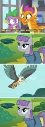 Size: 800x2213 | Tagged: safe, edit, edited screencap, screencap, maud pie, smolder, spike, bird, dragon, earth pony, pony, roc, molt down, caption, dragoness, female, image macro, mare, misspelling, molting, puberty, text