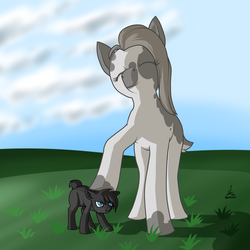 Size: 2500x2500 | Tagged: safe, artist:projectdarkfox, oc, oc only, oc:inkenel, oc:oretha, pony, cloud, female, grass, grass field, larger female, male, scrunchy face, size difference, smaller male
